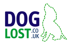 DogLost pet rescue community (Newport website design & web development)