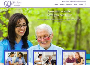 Blue Rosey Homecare (web design)