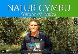 Natur Cymru - Nature of Wales